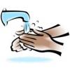 Pesutarvikud: harjad ja pesuained