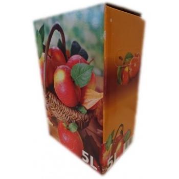 Säilituskoti karp 5l, värviline