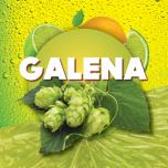 Humalagraanul Galena 100g, α12/β7,5